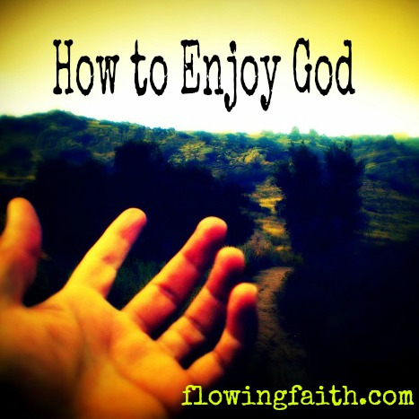 How to Enjoy God