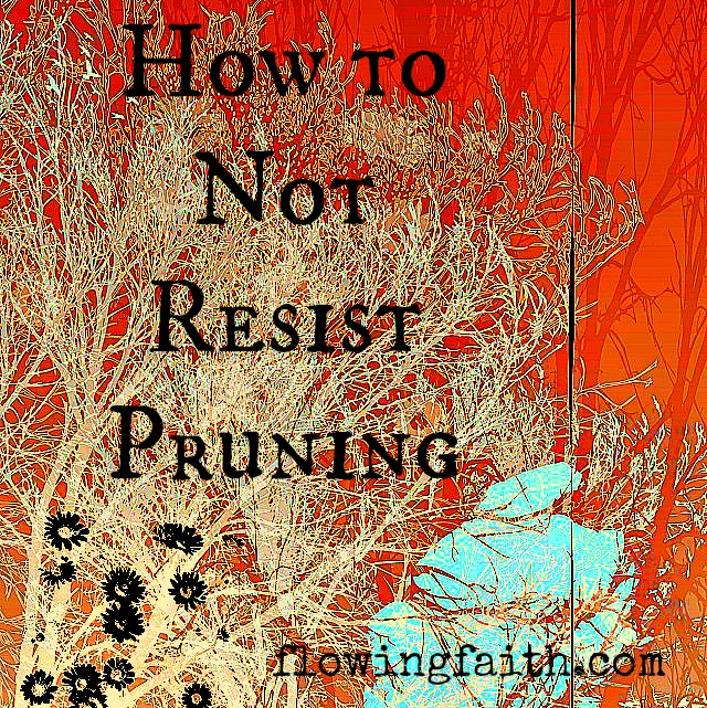 how to not resist pruning