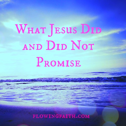 What Jesus did and did not promise