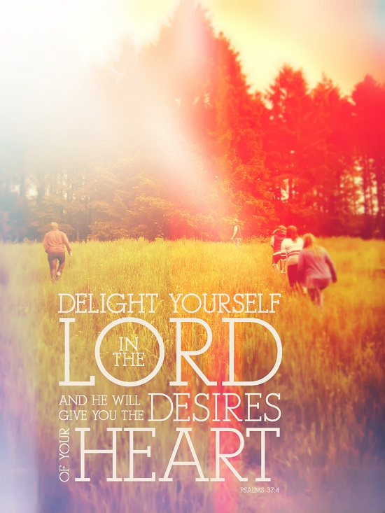 seek God and delight in him