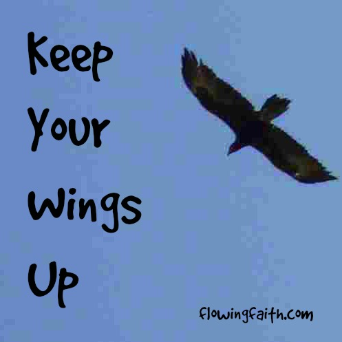 keep your wings up