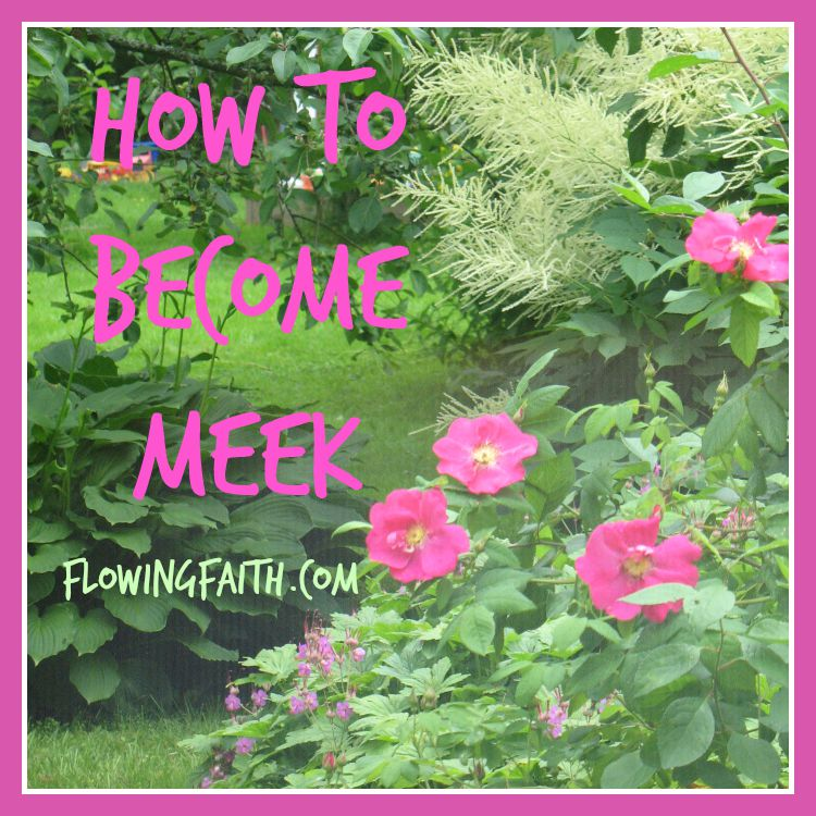 How to Become Meek