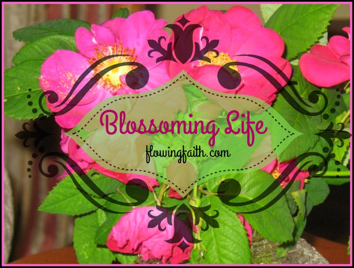 Blossoming life