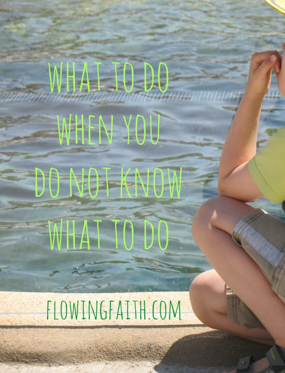 what to do when you do not know what to do