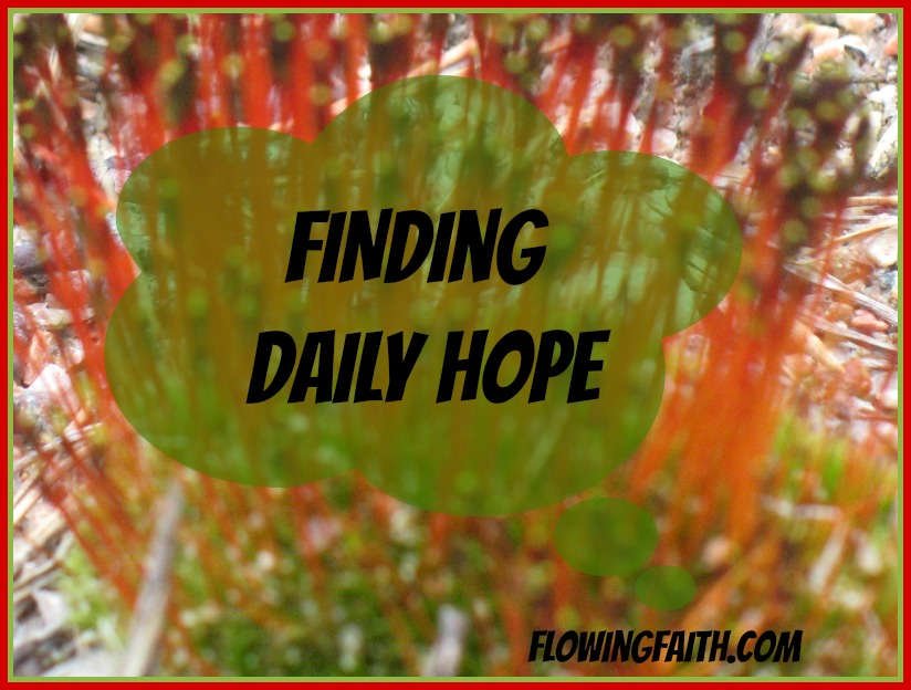 Finding Daily Hope