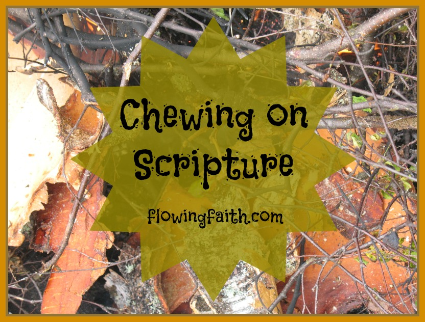 Chewing on Scripture