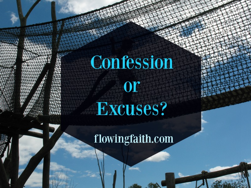 Confession or Excuses