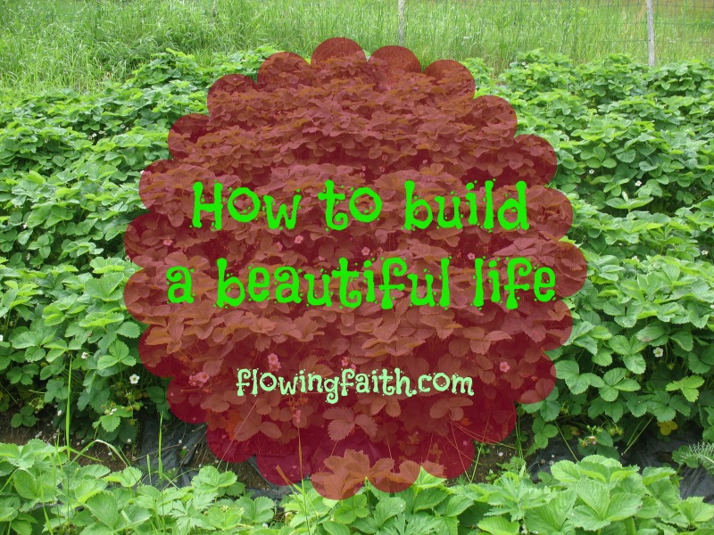How to build a beautiful life
