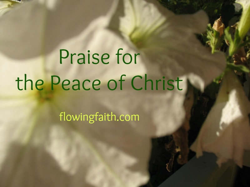 Praise for the Peace of Christ