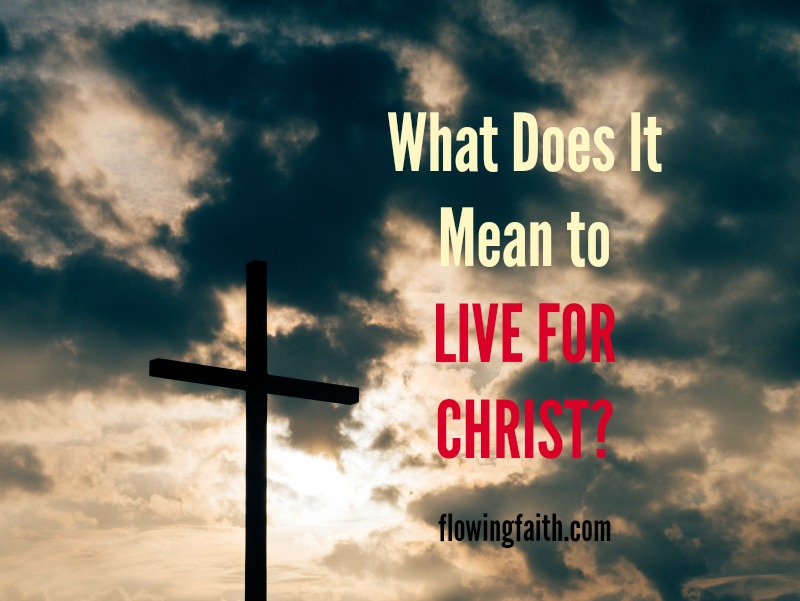 living in christianity The living in christ series is a comprehensive four-year high school religion curriculum that presents catholic theology in an engaging, accessible manner for students.
